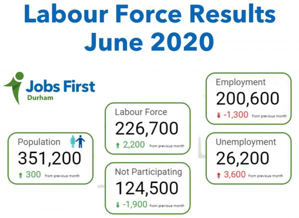 labour force survey